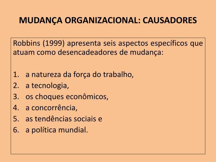 MUDANÇA ORGANIZACIONAL: CAUSADORES