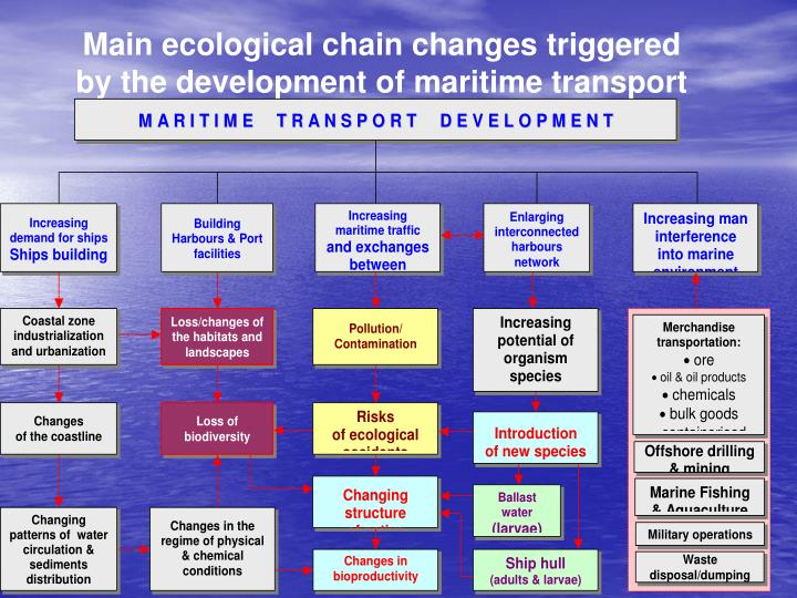 Main ecological chain changes triggered