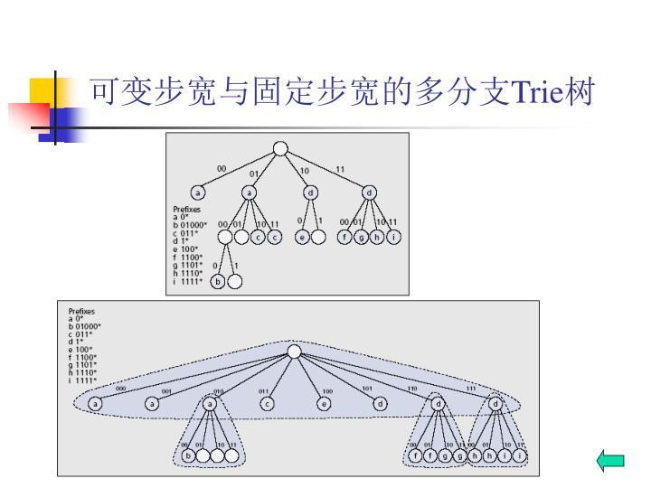 可变步宽与固定步宽的多分支