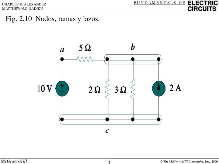 Fig. 2.10  Nodos, ramas y lazos.