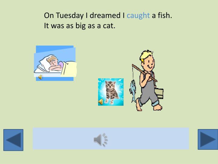 On Tuesday I dreamed I