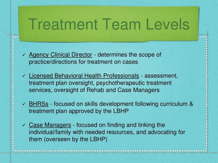 Treatment Team Levels