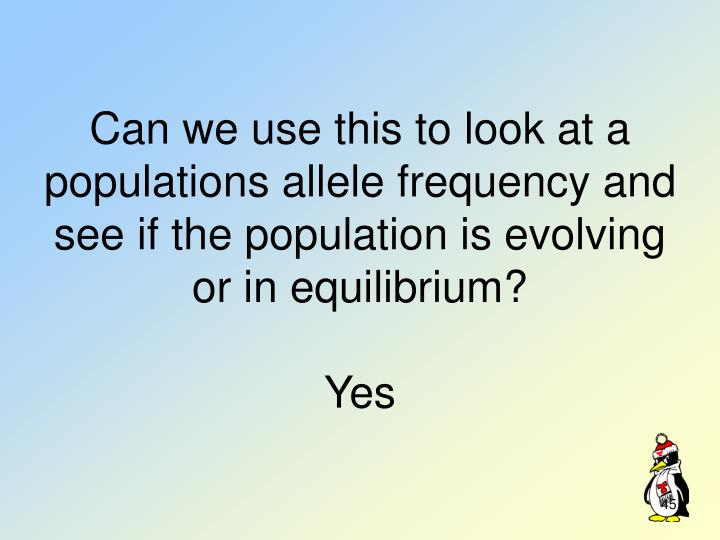 Can we use this to look at a populations allele frequency and see if the population is evolving or in equilibrium?