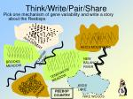 think write pair share