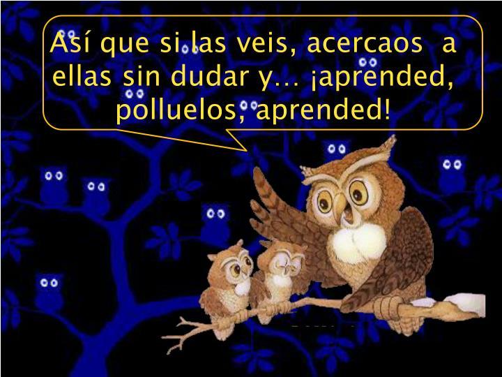 Así que si las veis, acercaos  a ellas sin dudar y… ¡aprended, polluelos, aprended!