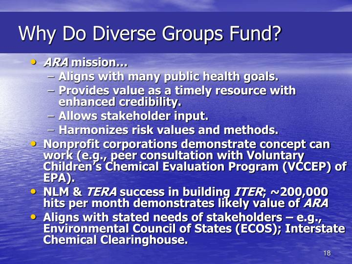 Why Do Diverse Groups Fund?