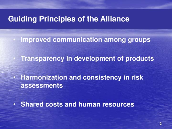 Guiding Principles of the Alliance