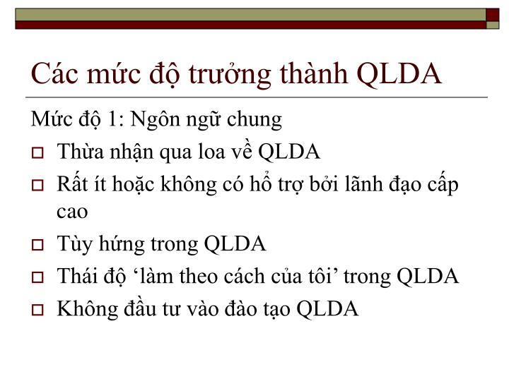 Các mức độ trưởng thành QLDA