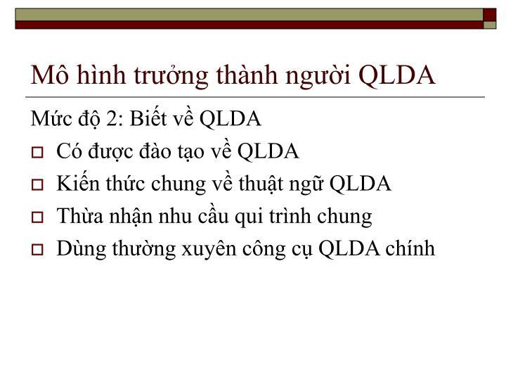 Mô hình trưởng thành người QLDA