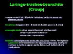 laringo tracheo bronchite croup1