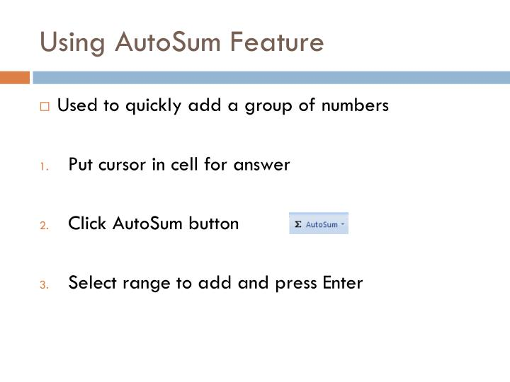 Using AutoSum Feature