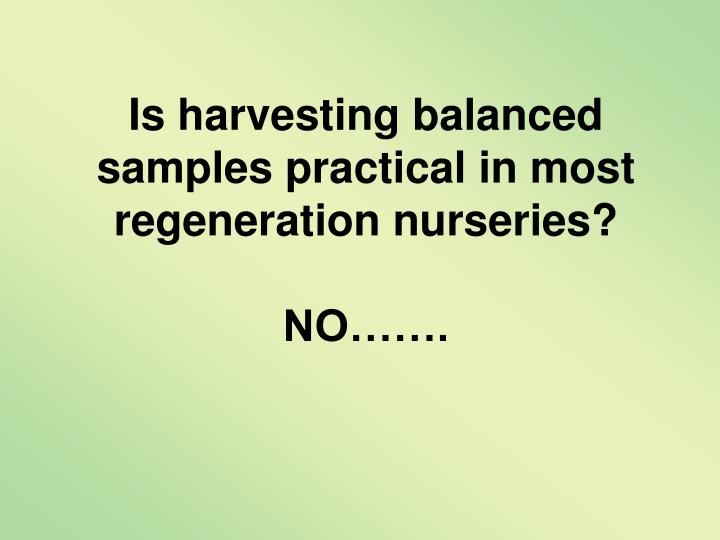 Is harvesting balanced samples practical in most regeneration nurseries?
