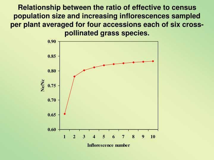 Relationship between the ratio of effective to census population size and increasing inflorescences sampled per plant averaged for four accessions each of six cross-pollinated grass species.