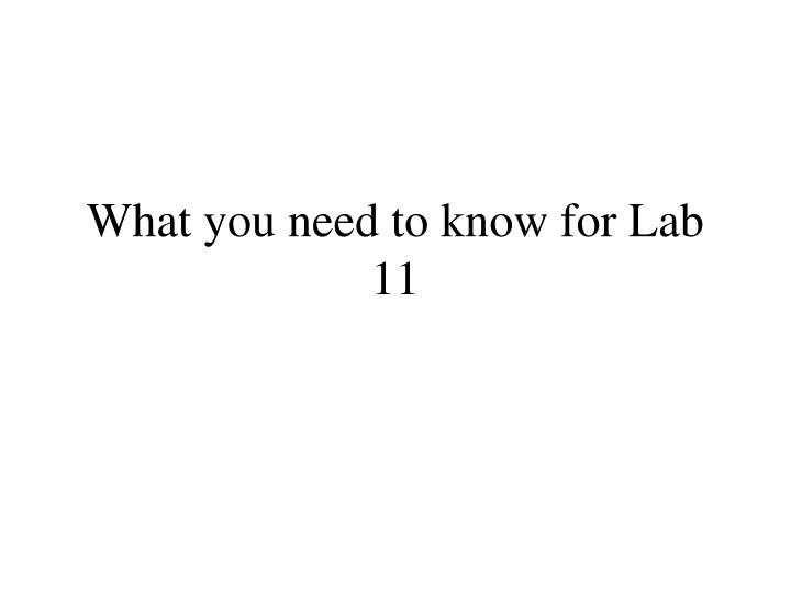 What you need to know for Lab 11