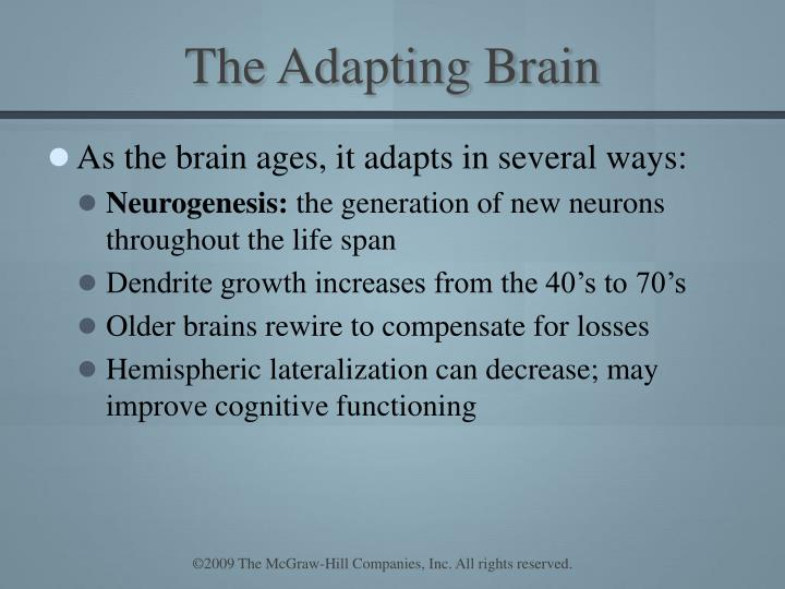 The Adapting Brain