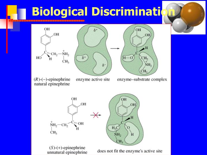Biological Discrimination