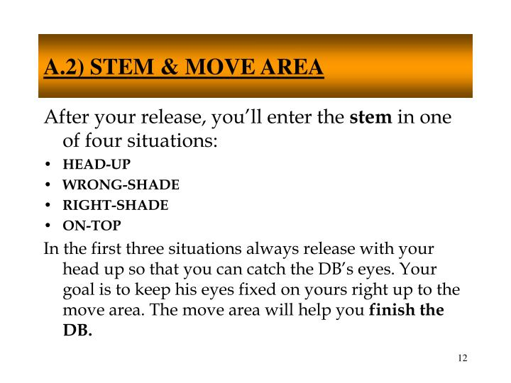 A.2) STEM & MOVE AREA