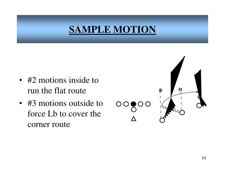 SAMPLE MOTION