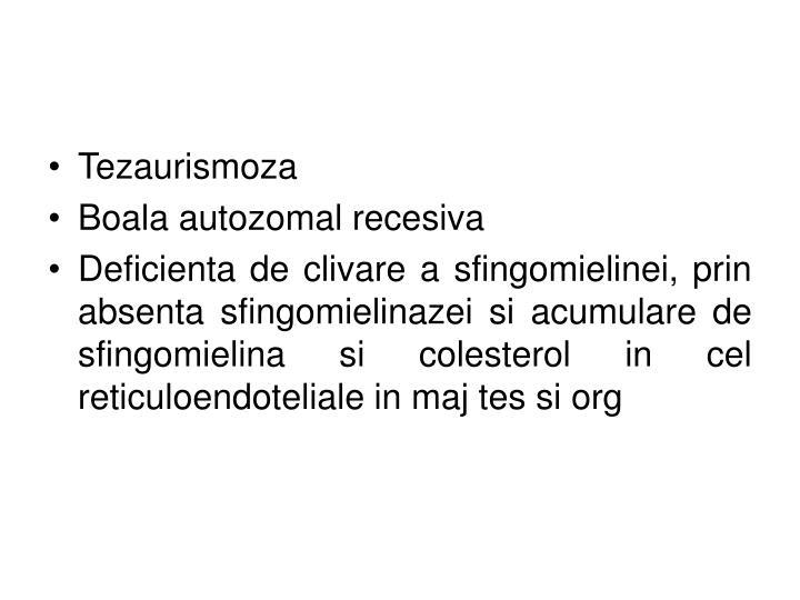Tezaurismoza