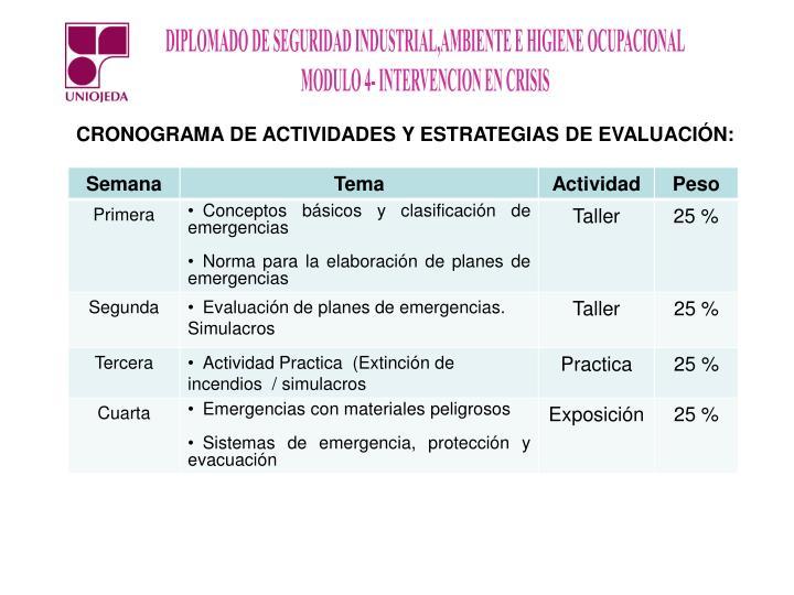 CRONOGRAMA DE ACTIVIDADES Y ESTRATEGIAS DE EVALUACIÓN:
