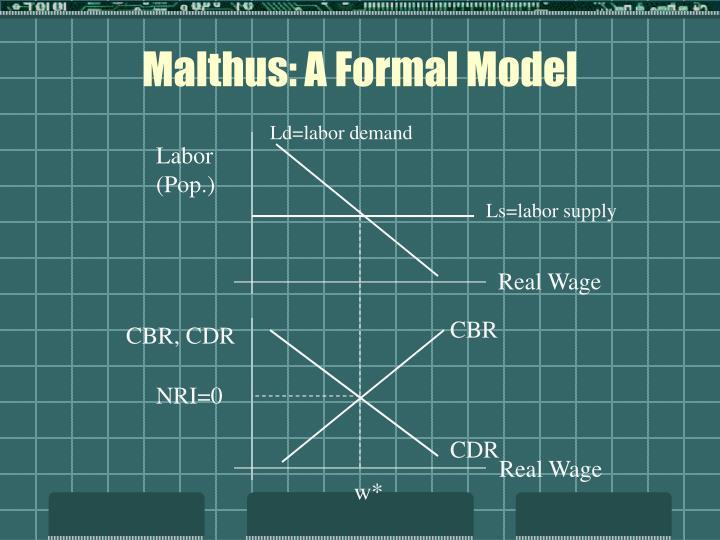 Malthus: A Formal Model