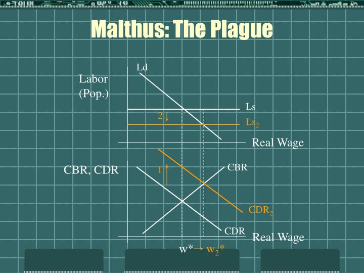 Malthus: The Plague