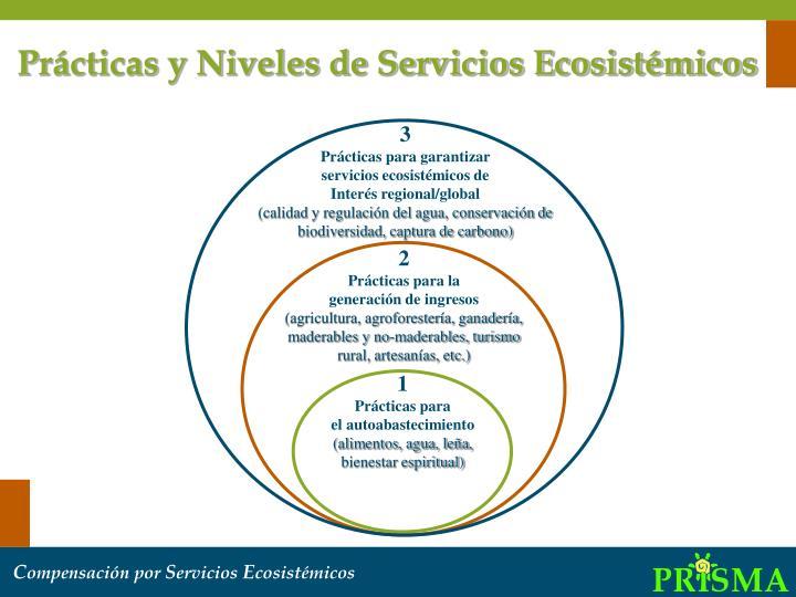 Prácticas y Niveles de Servicios Ecosistémicos