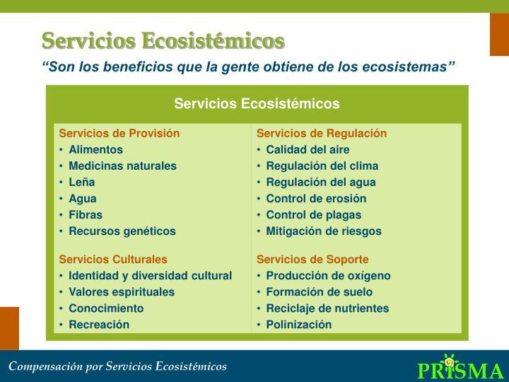 Servicios Ecosistémicos