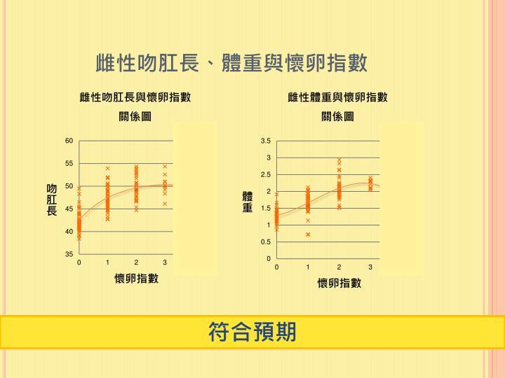雌性吻肛長、體重與懷卵指數