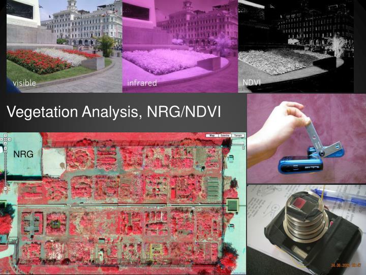 Vegetation Analysis, NRG/NDVI