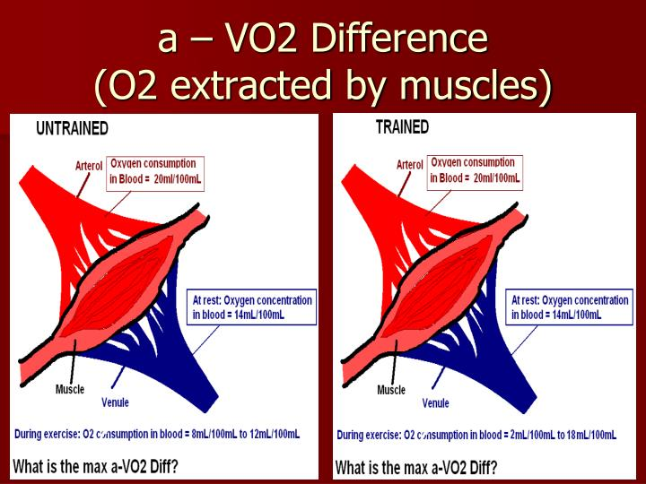 a – VO2 Difference