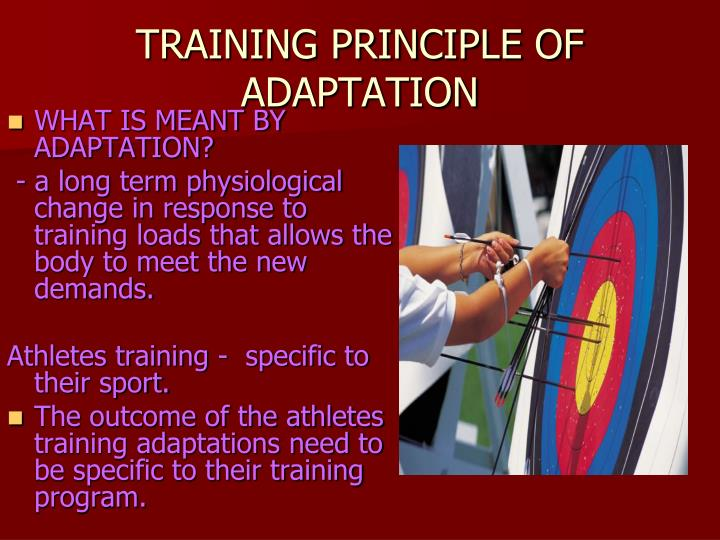 TRAINING PRINCIPLE OF ADAPTATION