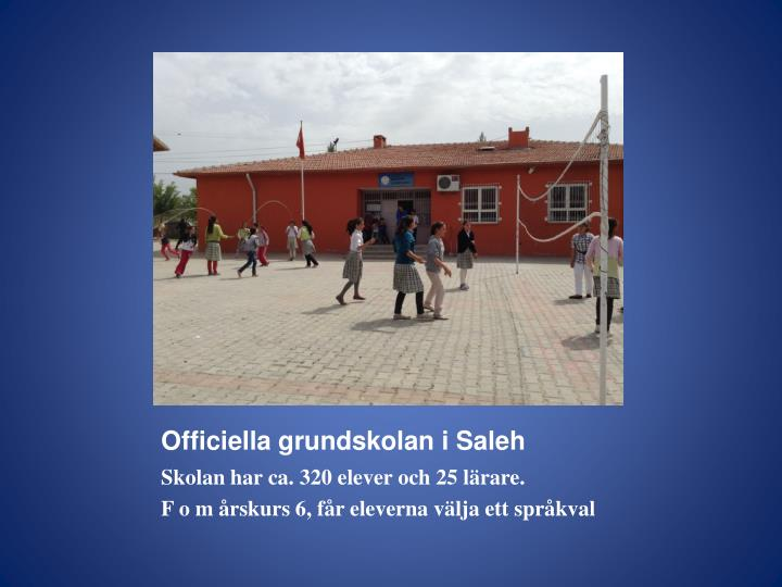 Officiella grundskolan i Saleh