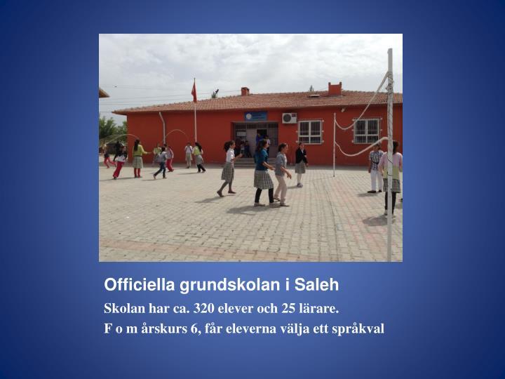 Officiella grundskolan i Saleh