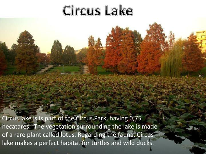 Circus Lake
