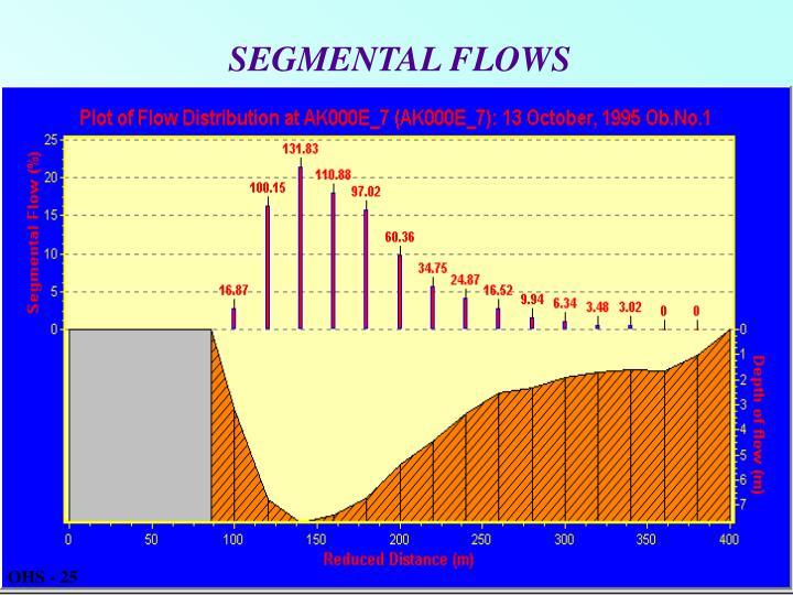 SEGMENTAL FLOWS