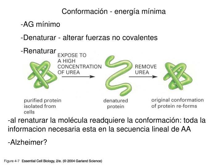 Conformación - energía mínima