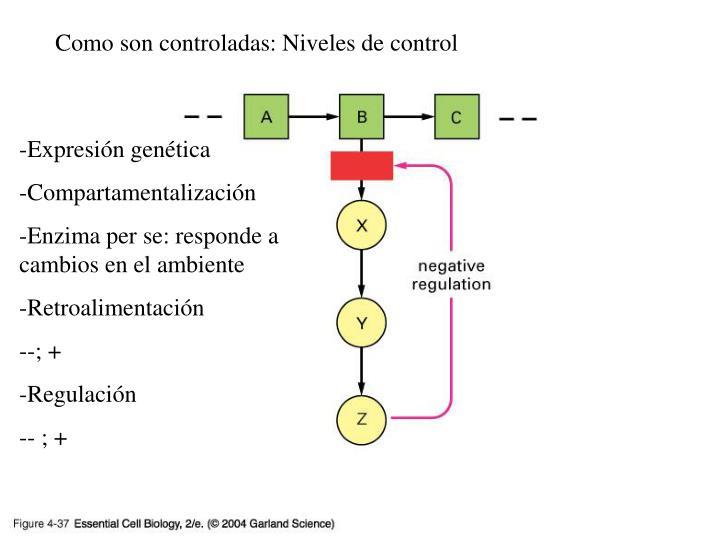 Como son controladas: Niveles de control