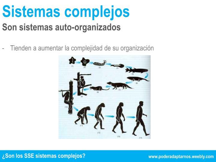 Sistemas complejos