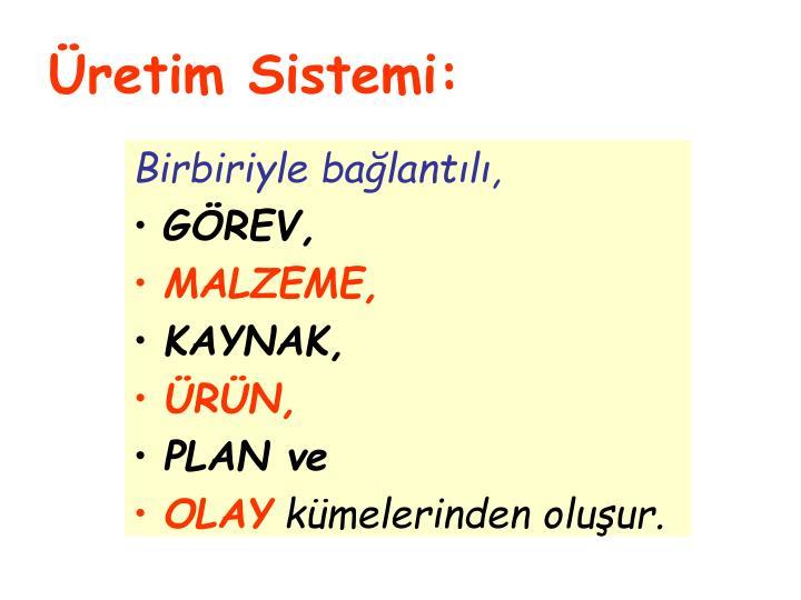 Üretim Sistemi:
