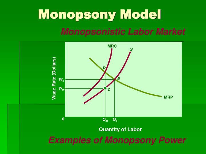Monopsony Model