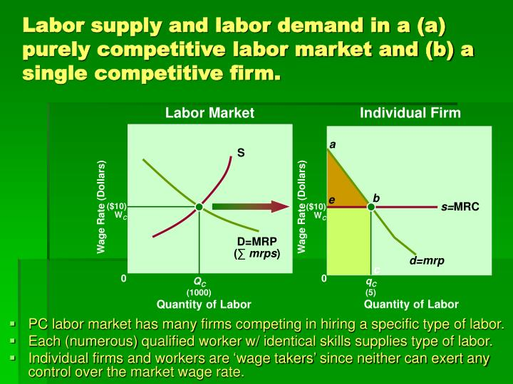 Labor supply and labor demand in a (a) purely competitive labor market and (b) a single competitive firm.