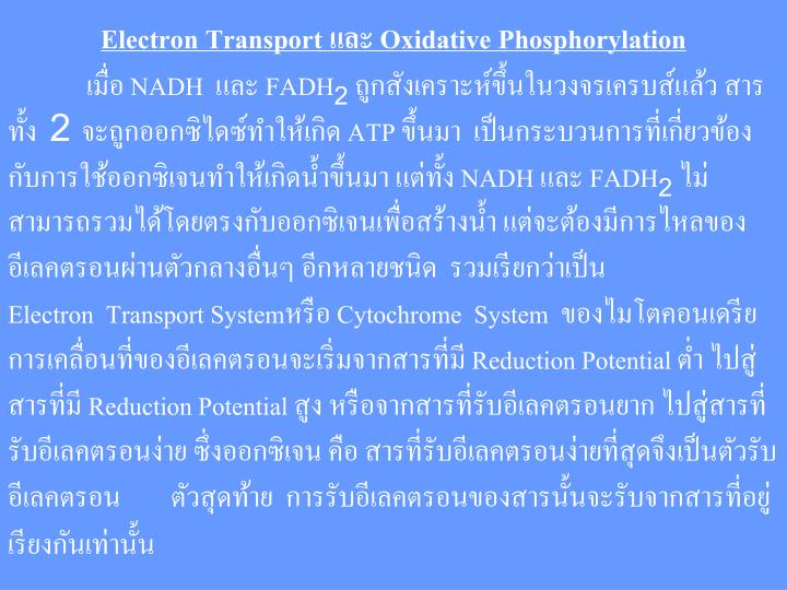 Electron Transport และ Oxidative Phosphorylation