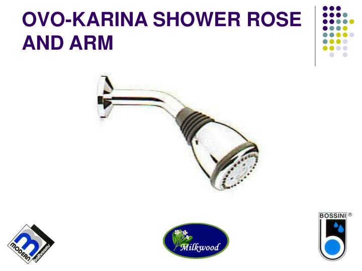 OVO-KARINA SHOWER ROSE AND ARM