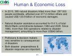 human economic loss