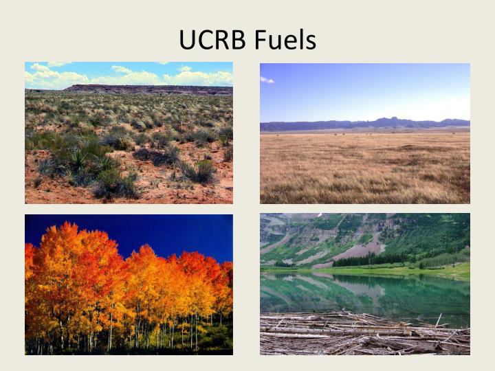 UCRB Fuels