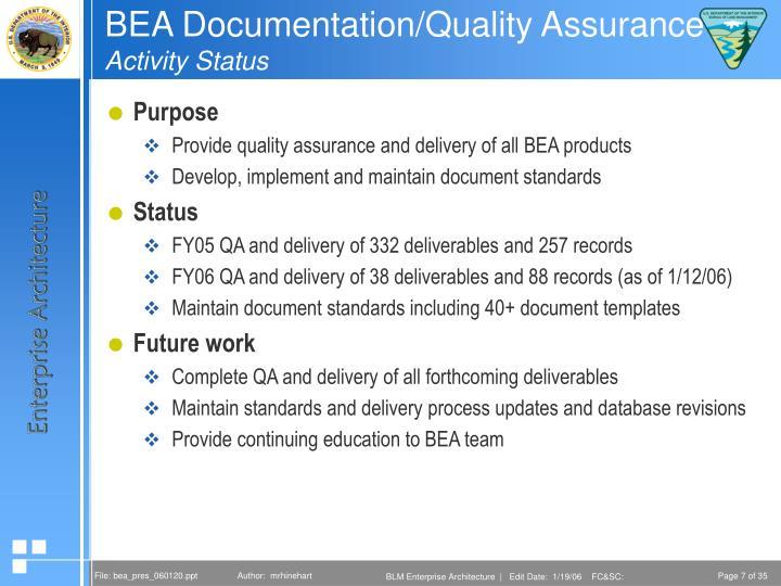 BEA Documentation/Quality Assurance