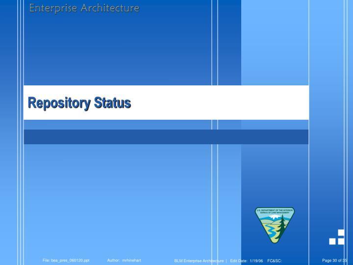 Repository Status