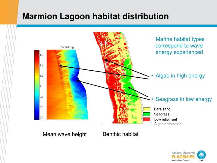 Marmion Lagoon habitat distribution