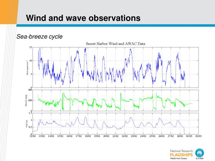 Wind and wave observations